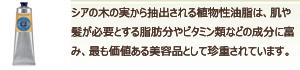 シアシリーズ紹介画像